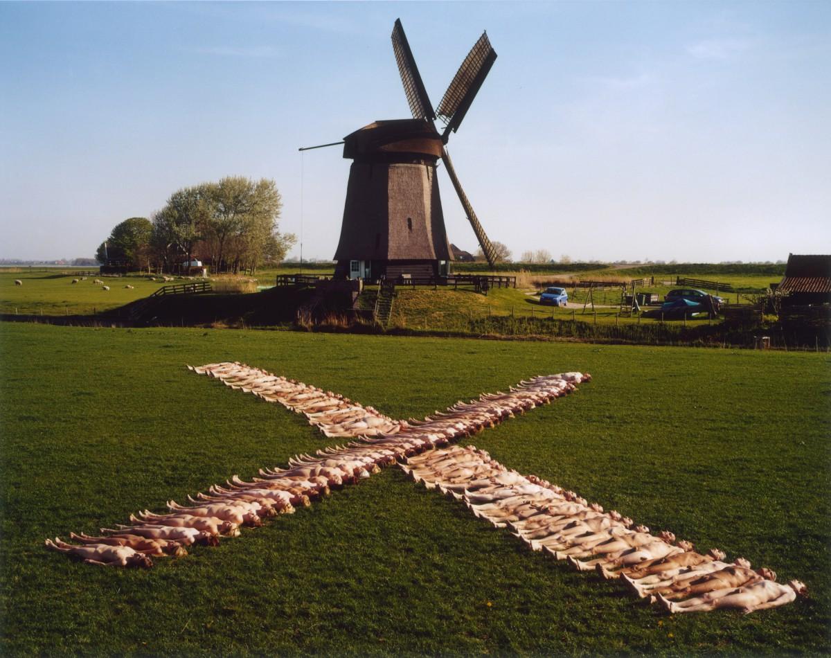 Netherlands 5 (Dream Amsterdam Foundation) 2007