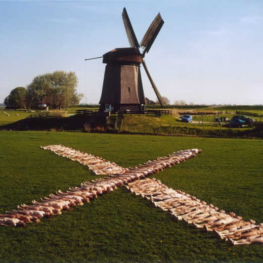 Netherlands 5 (Dream Amsterdam Foundation) 2007
